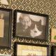 tv4 sommar med ernst småland esters gård katten porträtt